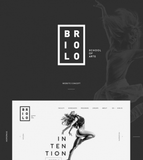 Briolo | Website concept on Web Design Served