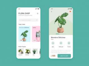 A Plant App Design exercise