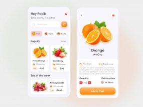 Grocery Delivery Mobile App (v2)
