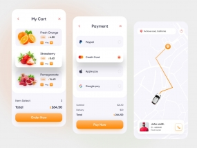 Grocery Delivery Mobile App (v2)